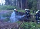 201706 - Waldbrand im Hammerholz